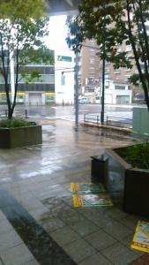 190521 雨です
