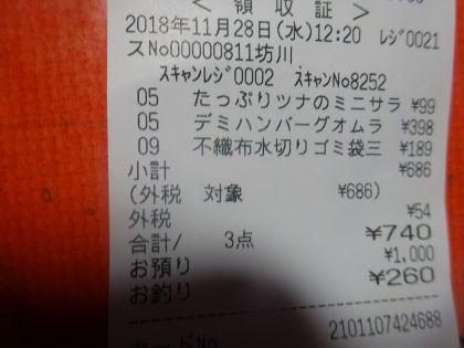 mini_DSC00528_20181128124736651.jpg