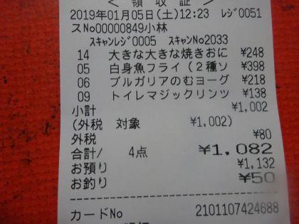 mini_DSC02874_20190105124052b0c.jpg