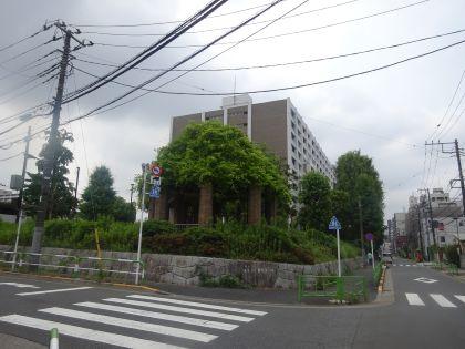 mini_DSC05154.jpg