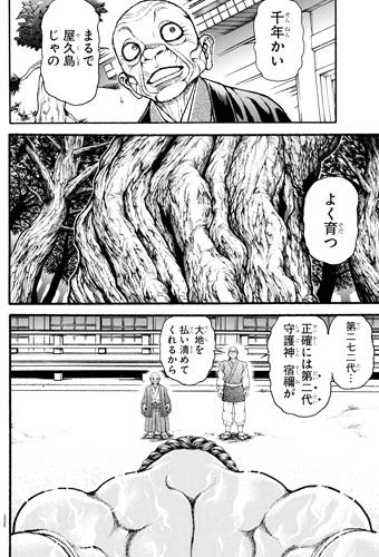 バキ道23話 樹齢1000年