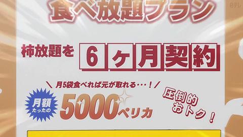 tonegawa20-181121120.jpg