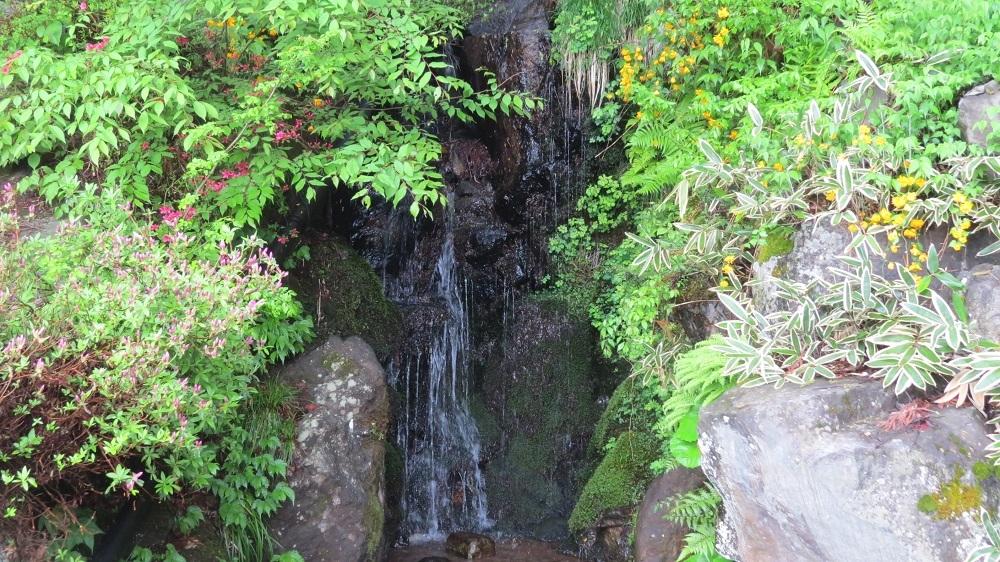19御嶽社脇の滝IMG_3790