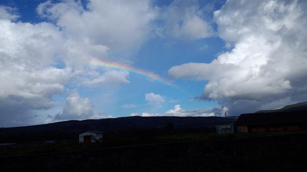 サバンナの虹DSC_0378