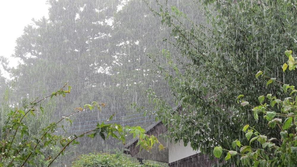 3糸のように雨IMG_4759