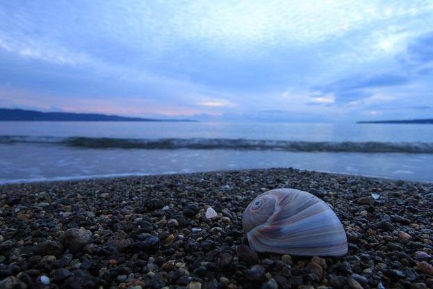 佐和田海岸夕景2