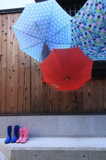 大崎下島傘の花
