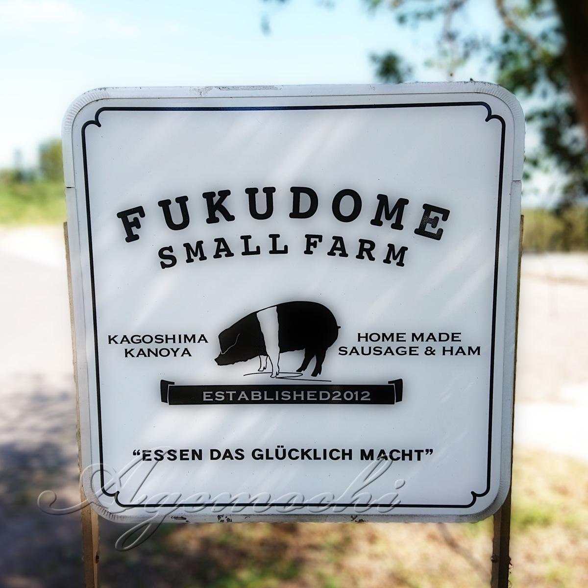 fukudome_shop.jpg