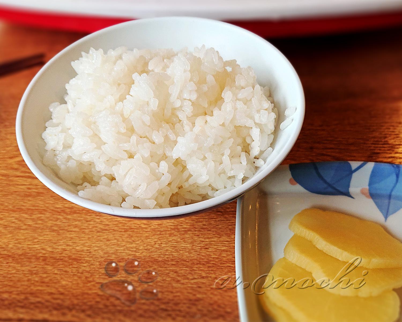 izuminokoi_rice.jpg