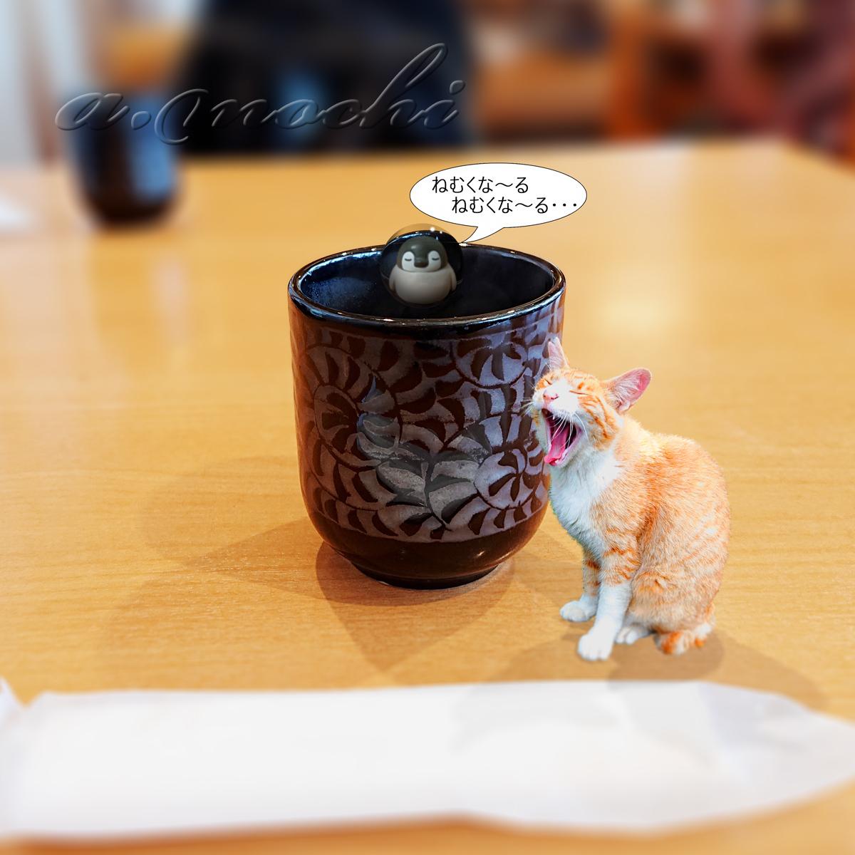 maitsu3_ocha.jpg