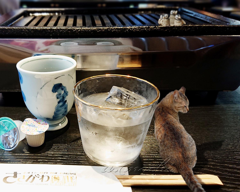 sasagawa_ohiya.jpg