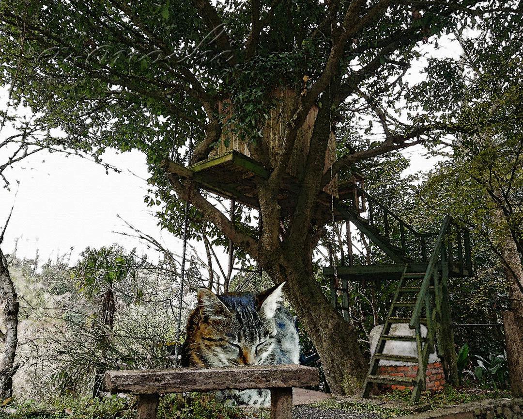 stovehouse_tree.jpg