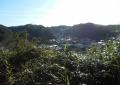 杉本寺境内から見る鎌倉の市街地
