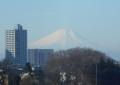 鷺森高架橋から見る富士②