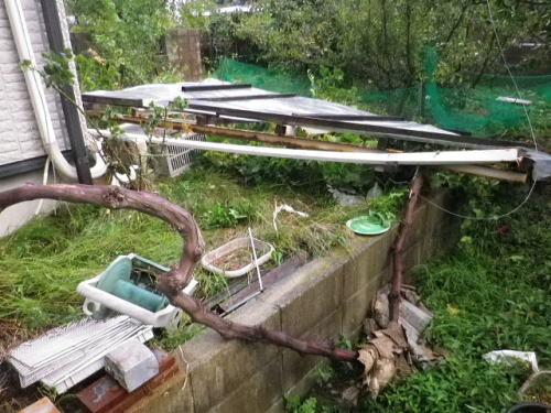 台風21号 2018 9 4-4