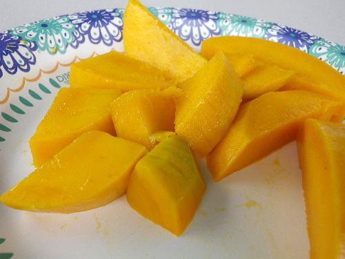 マンゴー試食