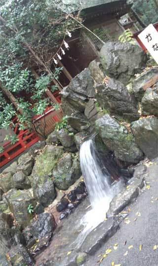 20181203_tsubakiookami_031.jpg