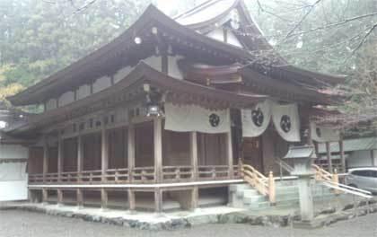 20181203_tsubakiookami_037.jpg
