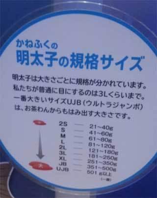 20181225_mentai_tokoname016.jpg