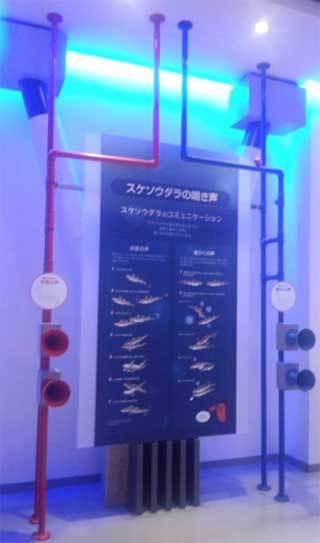 20181225_mentai_tokoname027.jpg