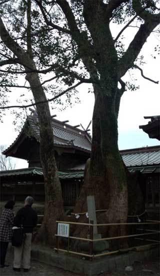 20190101_yaizujinjya_013.jpg