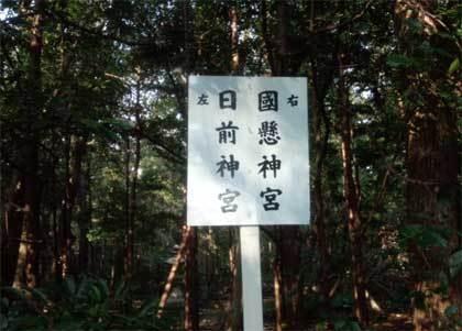 20190125_hinokuma_004.jpg