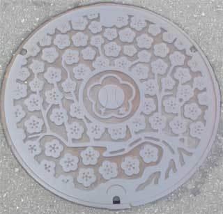 20190927_komoro_manhole_006.jpg