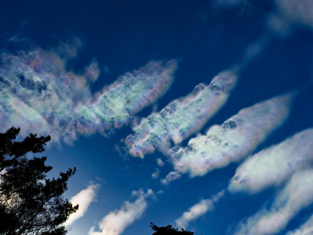 彩雲DSCN2391