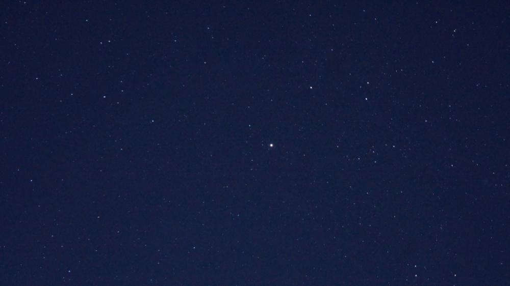 星1DSC09894
