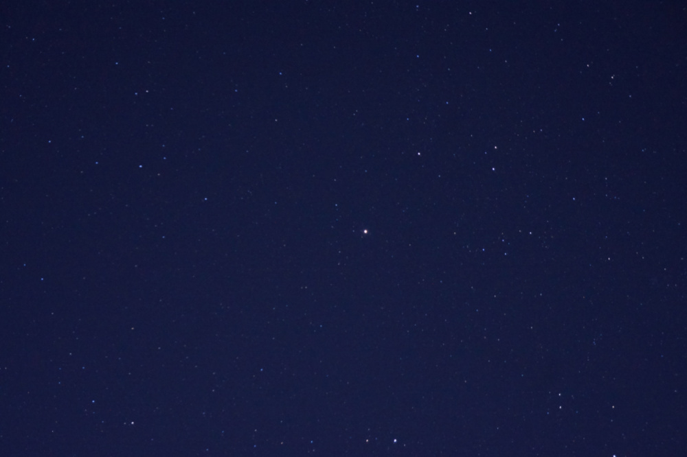 星1RDSC09894