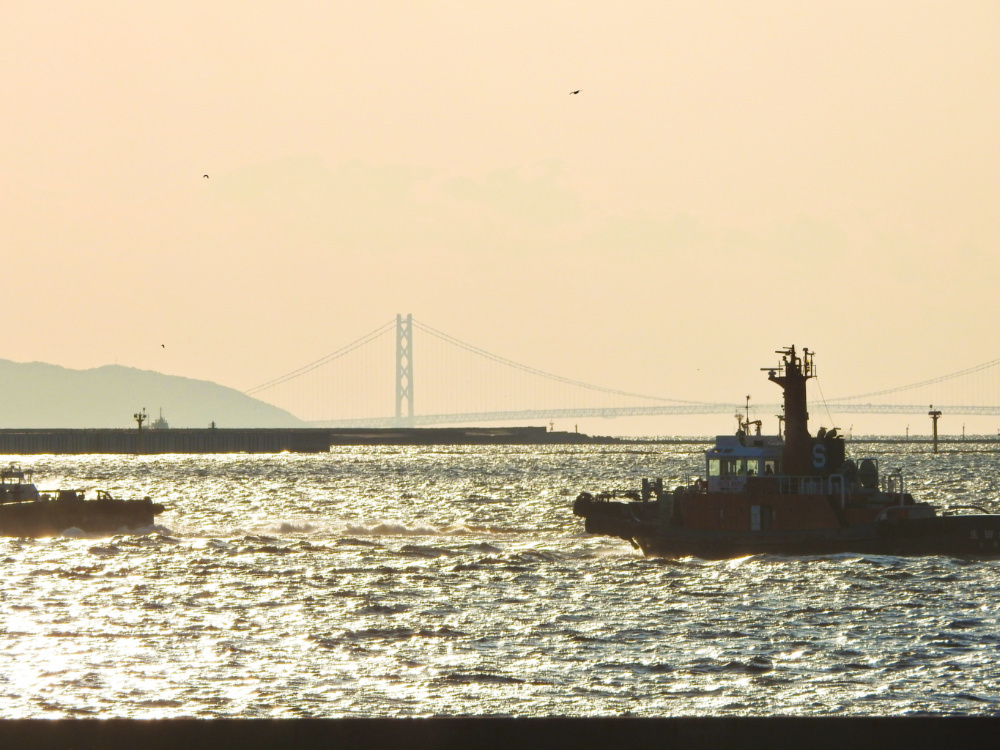 南港DSCN3894