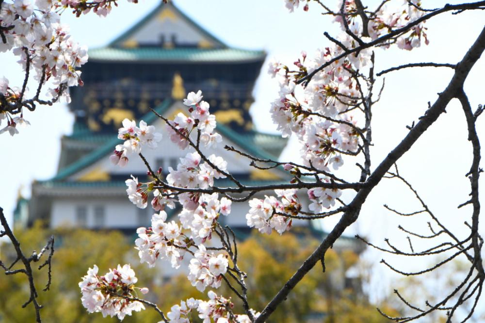 大阪城DSC_4053