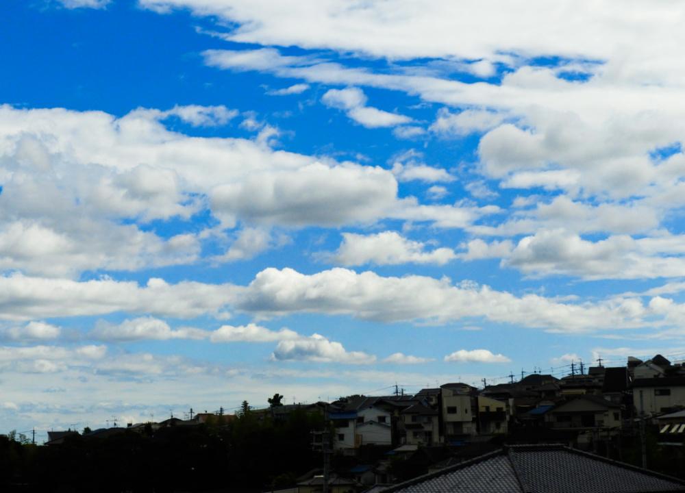 雲DSCN8248