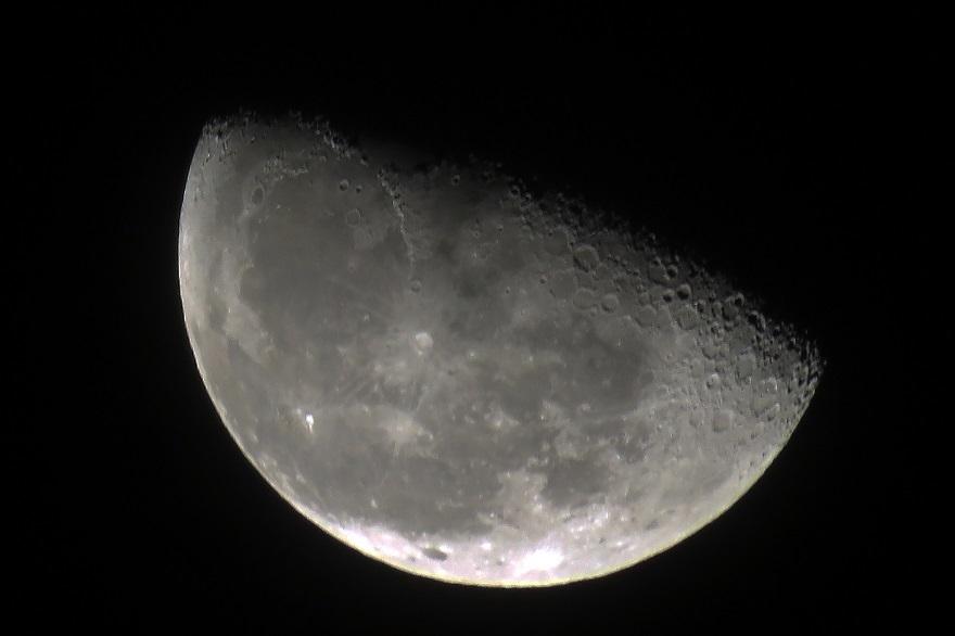11月の月 (0)