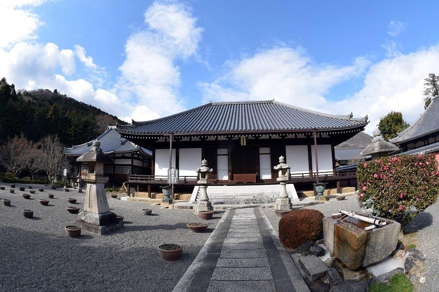 真冬の當麻寺 (0)