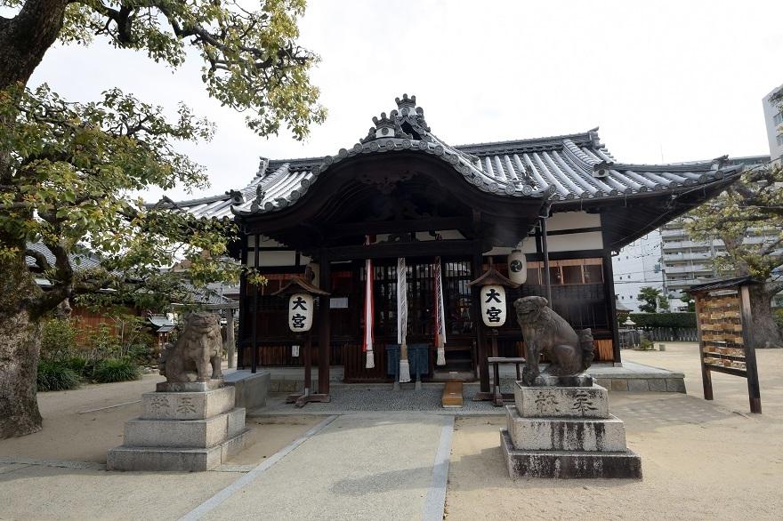 大宮神社・桜 (1)