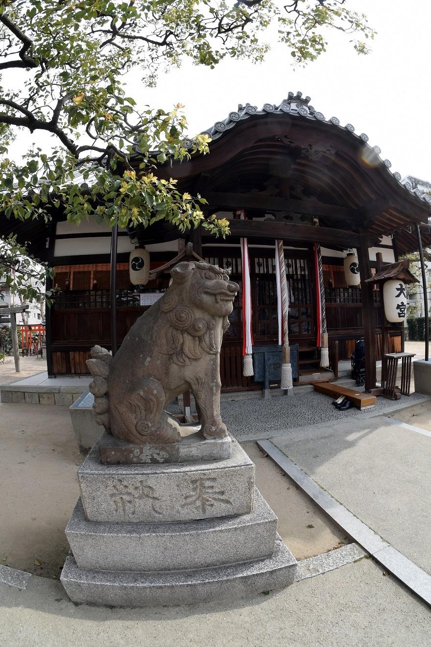 大宮神社・桜 (2)