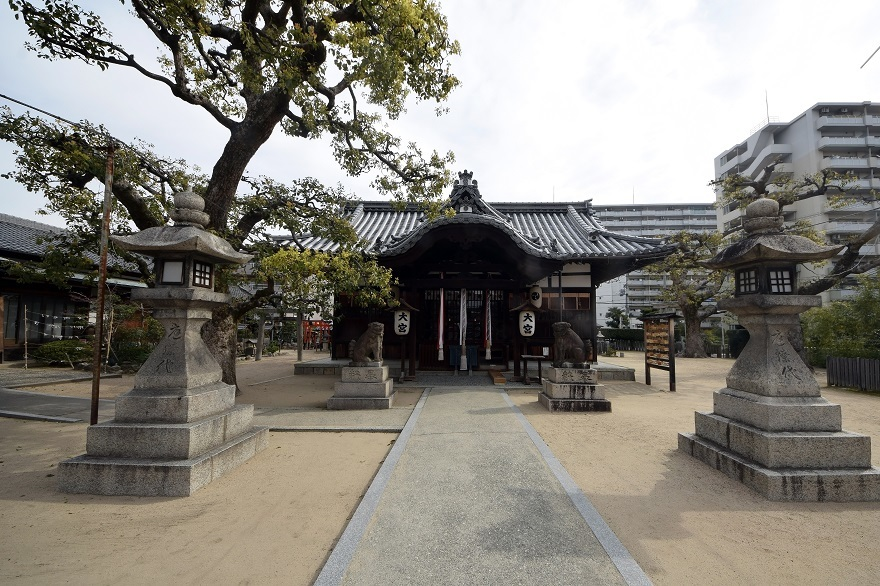 大宮神社・桜 (13)