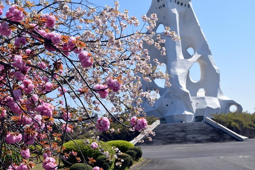 PLの塔・桜19 (2)