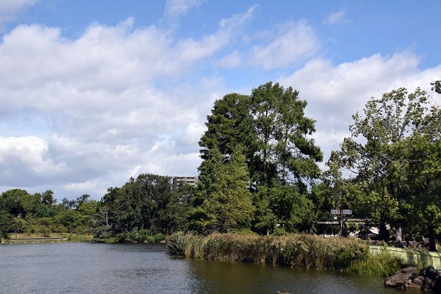 長居植物園・10月(14)