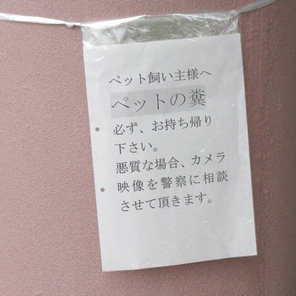 Latte654_02.jpg