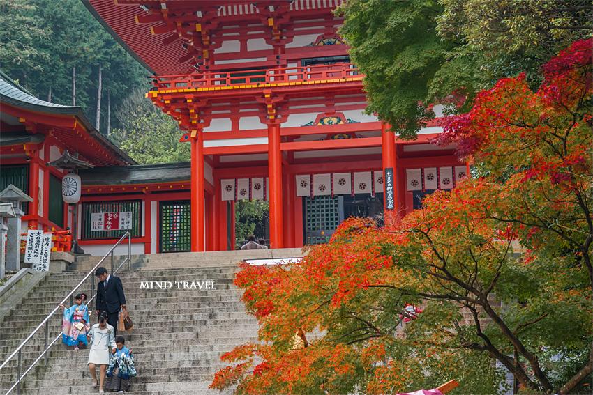 近江神宮 紅葉