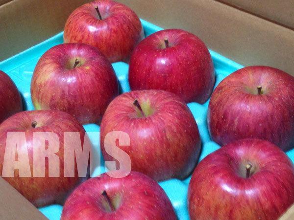 伊那路のリンゴ