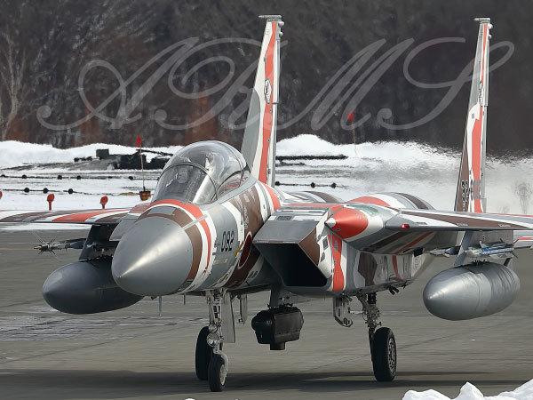 アグレッサー F15 (飛行教導群)