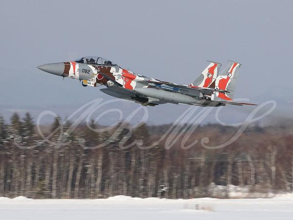 飛行教導群のF15