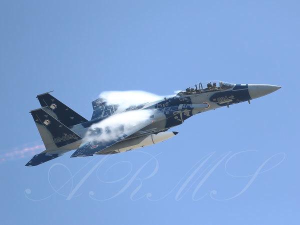 飛行教導群(アグレッサー) F15