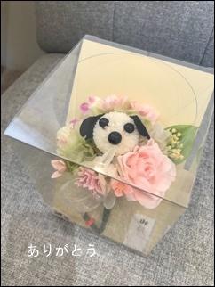 愛犬 供え花