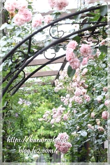 ホーム&ガーデン201906-11