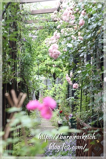 ホーム&ガーデン201906-12
