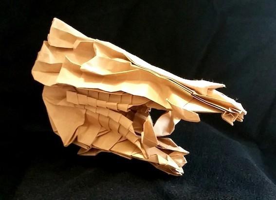 イノシシ頭骨3